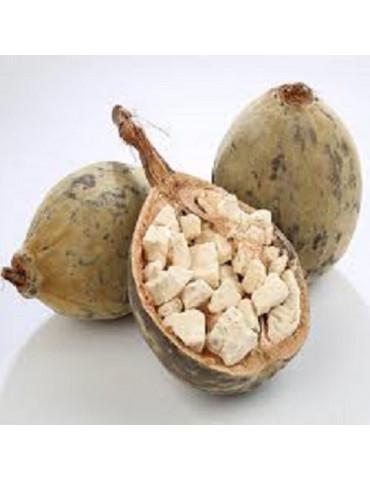 Huile végétale Baobab