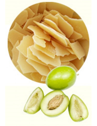 Émulsifiant Olive Protection