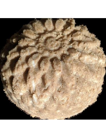 Fragrance Bubble Gum