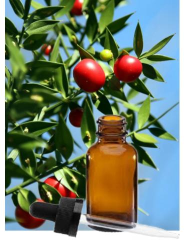 Acide salicylique végétal
